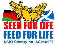 Seed for Life Logo